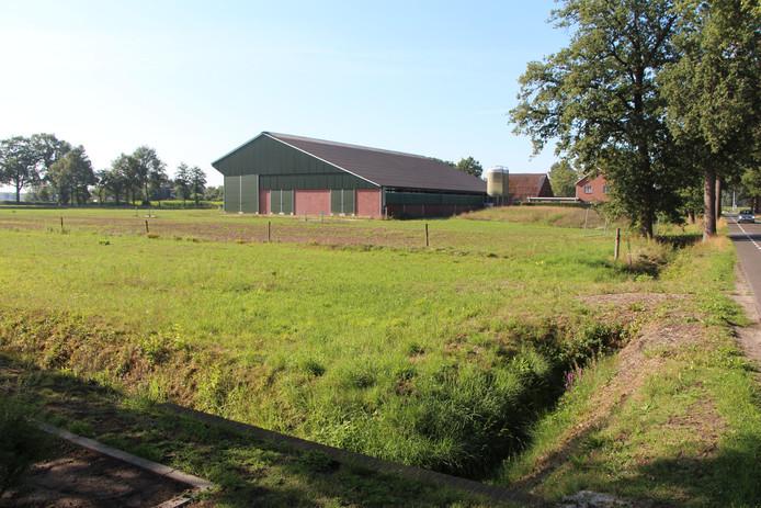 De situatie achter de stal van Epping aan de Pastoor van Everdingenstraat in Rietmolen, gezien vanaf de grens van het bedrijventerrein.