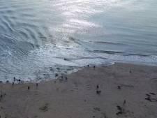 'Kinderwagen spoelt bijna Badstrand af door te hard varend zeeschip'