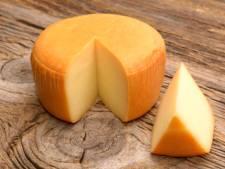Un Allemand tente de faire passer clandestinement 100kg de fromage suisse