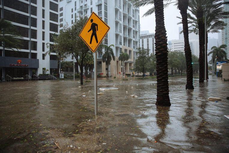 Orkaan Irma zet de straten van Miami blank. Beeld Photo News