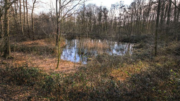 Met de app 'Ypres Salient 1914-1918 The Bluff' kan men op eigen houtje de WO I-resten in de Palingbeek opzoeken.