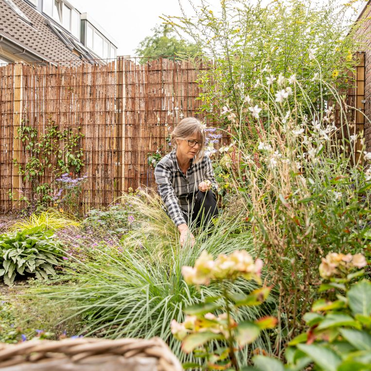 Stijntje Blankendaal in haar tuin in Zwolle. Beeld Harry Cock
