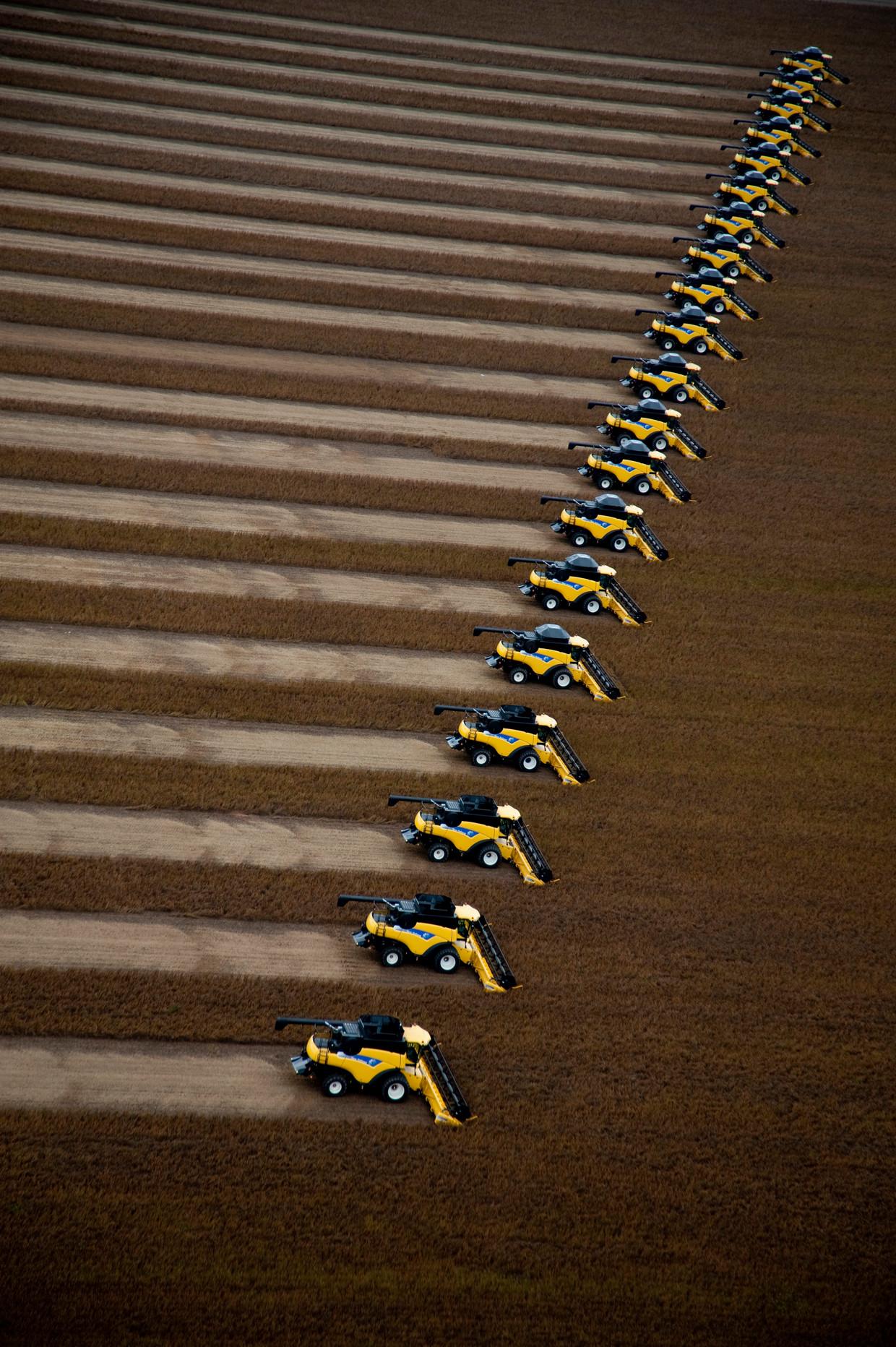 Een sojabonenplantage in Correntina, Brazilië. Beeld Corbis via Getty Images
