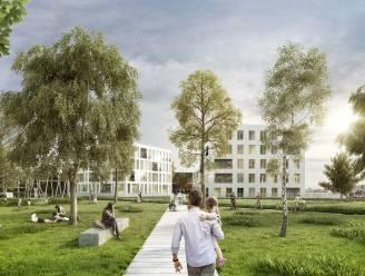 Is bouwen aan de Dender nog wel verstandig? Stadsbestuur ziet geen problemen met nieuwe woningen op Inghelantsite