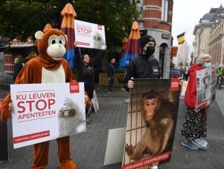 Animal Rights voert actie tegen apenexperimenten van de KUL aan start van academiejaar