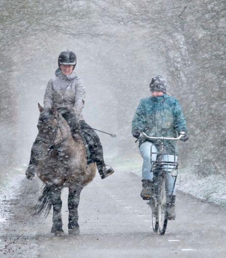 Eerste vlokken gespot in Zeeland, later vandaag in heel Nederland sneeuw