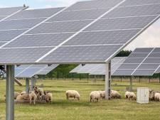 Massaal verzet in Cothen tegen zonneweide bij dorpsentree