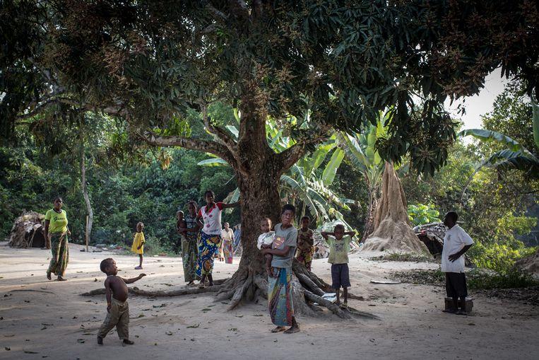 Baka-pygmeeën in Congo. WWF kreeg onlangs nog kritiek omdat door haar betaalde overheidsrangers pygmeeën uit een regenwoud in Congo zouden hebben verdreven om de lokale bosolifanten en gorilla's te beschermen. Beeld The Washington Post via Getty Im
