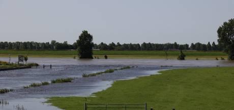 Nieuwsoverzicht | Ook in Brabant zeer hoge waterstanden - Man gaat er na aanhouding vandoor met politiewagen