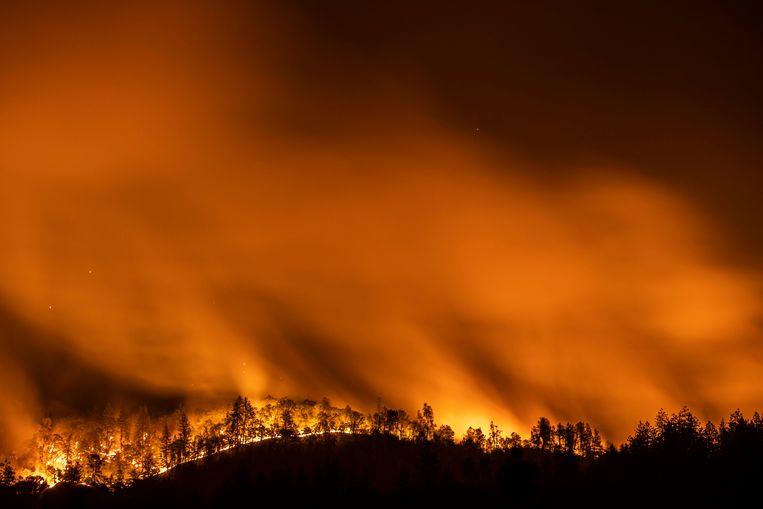 Ook in de Amerikaanse staat Californië, zoals hier in Lakehead, woeden talloze branden. (01/07/2021) Beeld Photo News
