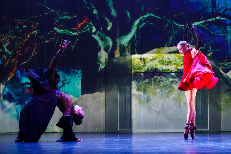 GRIMM (8+) door ISH en de Junior Company van Het Nationale Ballet in 2018.  Beeld Michel Schnater