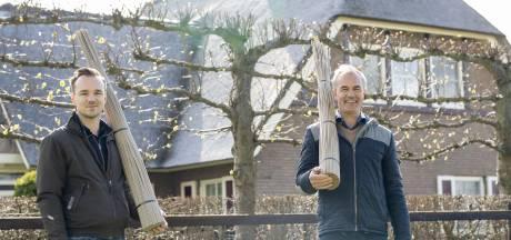 Markelo's bedrijf gelooft heilig in daken van kunstriet