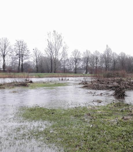 Eindelijk: hoog water! Is de droogte nu voorbij?
