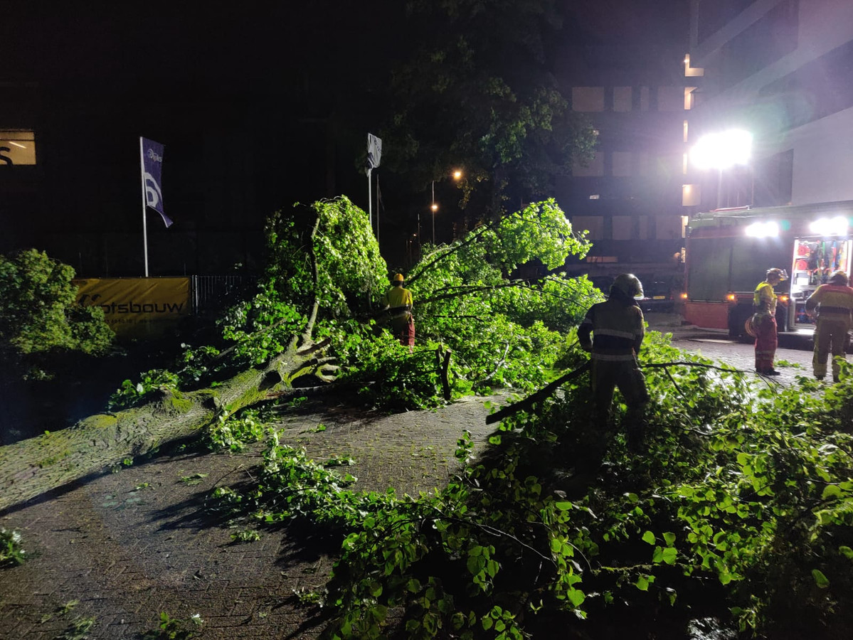 De brandweer is vannacht rond 02.00 uur druk met het in stukken zagen van vier omgevallen bomen aan de Goffertweg.