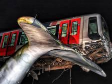 Roep om metrostel op walvisstaart in Spijkenisse te vereeuwigen: 'Dit is historisch'
