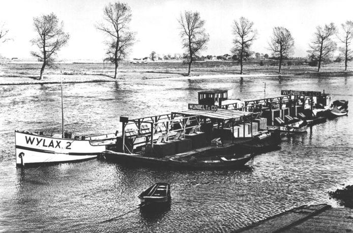 Wylax Wijnbelt & Co werd in 1908 opgericht en was een handelsbedrijf in zoetwatervis, Hollandse zalm en paling.