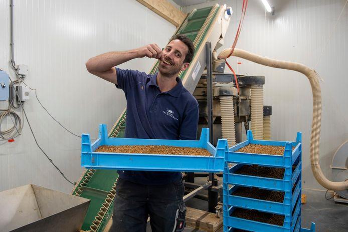 Boer Rowin Batterink uit Nijkerk kweekt meelwormen. Hij lust ze zowel rauw als gedroogd.