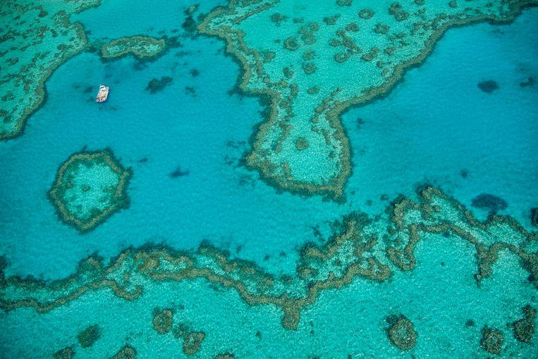 Luchtfoto van het Groot Barrièrerif voor de kust van Queensland. Tot grote opluchting van Australië heeft de Unesco het nog niet de officiële status van Bedreigd Werelderfgoed gegeven.  Beeld REDA&CO/Universal Images Group
