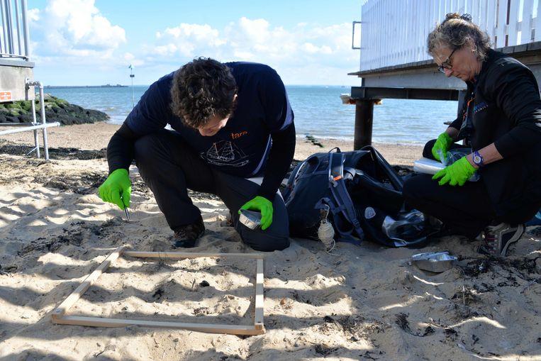 Op een strand nabij Londen zoeken onderzoekers naar microplastics. Beeld AFP