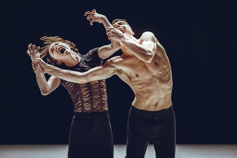 Dansers Mikaela Kelly en Jesse Callaert in The Big Crying, choreografie van Marco Goecke door Nederlands Dans Theater 2. Beeld Rahi Rezvani