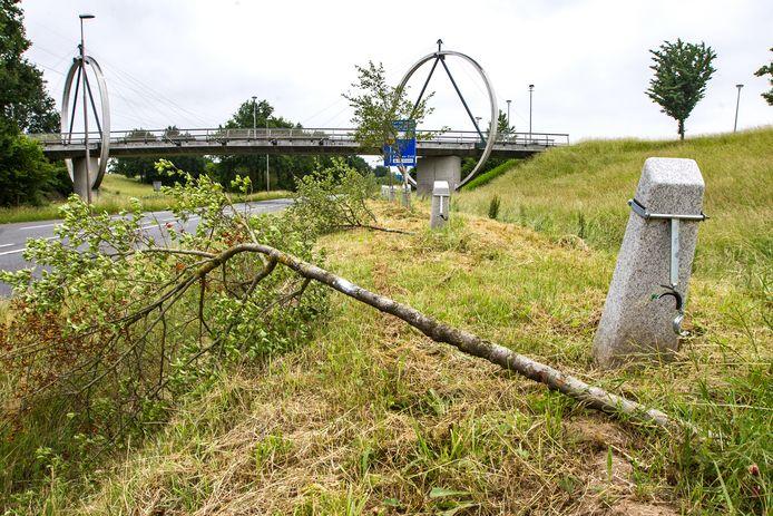 Bijna de helft van de 1177 meidoorns van landschapskunstwerk Het Witte Lint werd begin juni gekapt. Daar blijft het niet bij. De kap van de meidoorns gaat na de bouwvak nog verder.