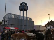 Teleurstelling in Hedel; paardenmarkt gaat opnieuw niet door