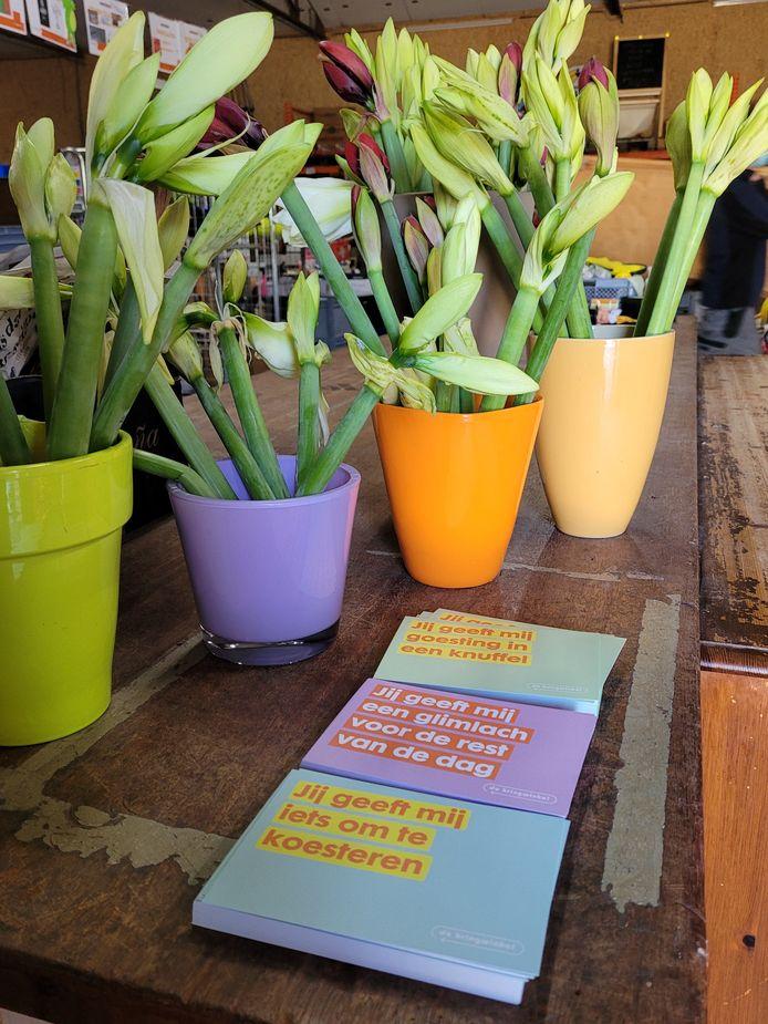 De 'gevers' in de Kringwinkel De Cirkel kregen allemaal een bloemetje zaterdag.