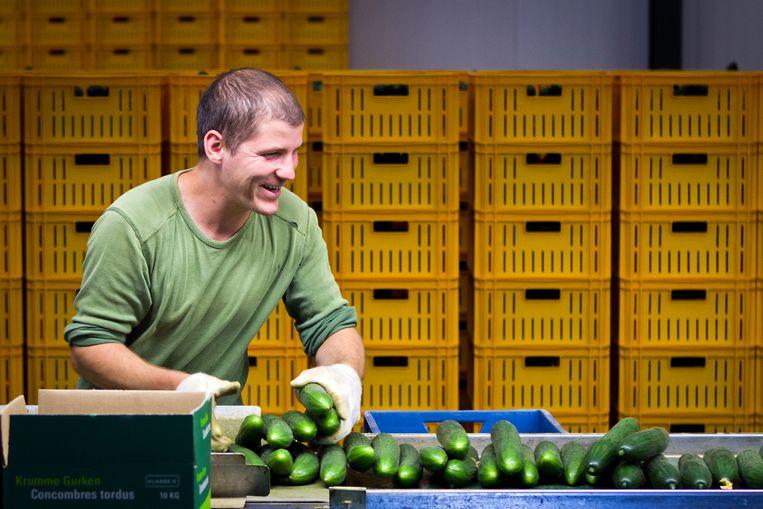 Van de 205 deelnemende Nederlandse bedrijven heeft de helft een programma ontwikkeld om werknemers op basis van hun behoeften en wensen vitaal en gezond te houden. Beeld ANP
