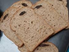 Dode muis in brood van Albert Heijn: 'Ik zag een stuk met haartjes'