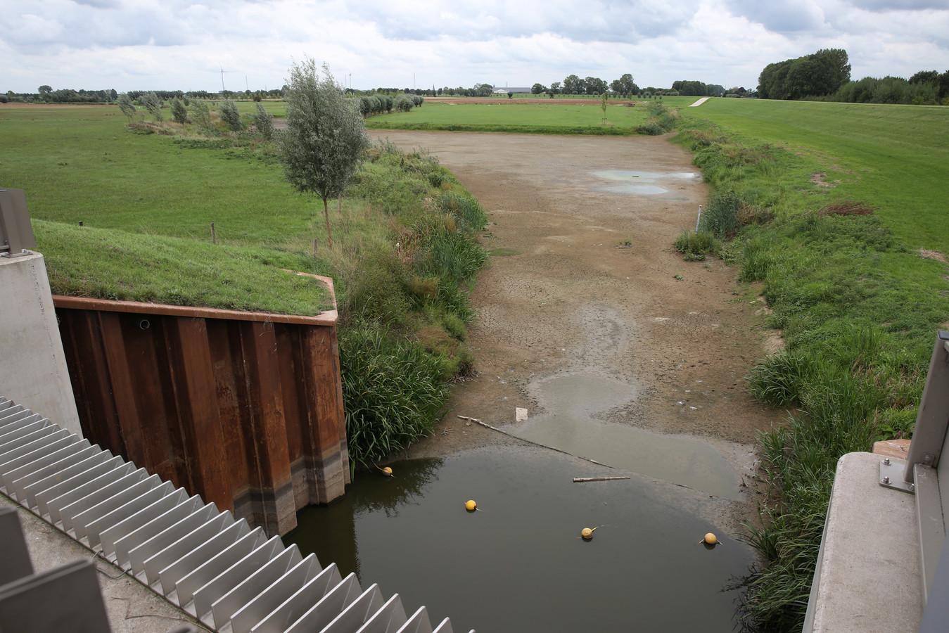 Vissen hebben bij Gemaal Nijenbeek nog maar een kleine plas water tot hun beschikking.