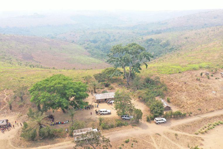 Colruyt gaat 12 miljoen bomen planten in Congo om zo al haar CO2-uitstoot te compenseren Beeld Colruyt