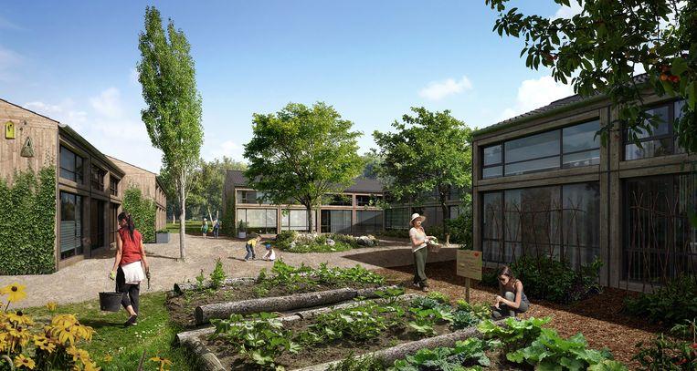Een impressie van de wijk Buurtschap Te Veld in Eindhoven, waar in de komende maanden 700 tijdelijke woningen moeten verrijzen. Beeld Gemeente Eindhoven
