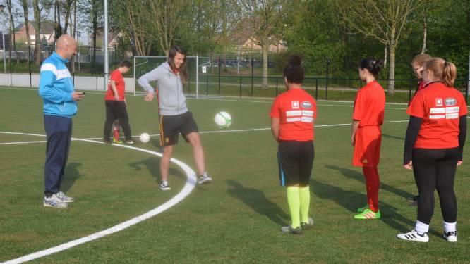 Voetbalclubs Standaard Denderleeuw en FCV Dender leggen jeugdwedstrijden en -trainingen stil