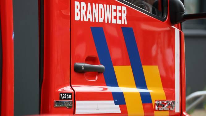 """Explosie bij Groothandelsmarkt op Kielsbroek: """"Vooral veel rookontwikkeling, maar snel onder controle"""""""