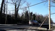 Grobbendonk plaatst 'eekhoornbruggen'