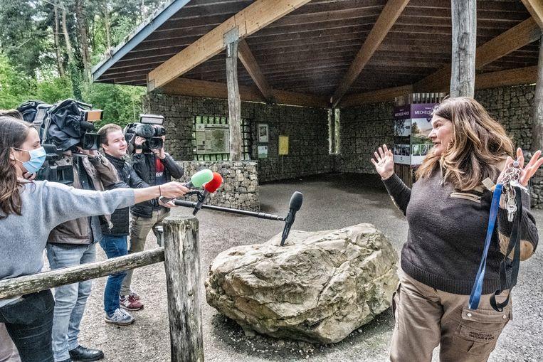 Een boswachter van het nationaal park Hoge Kempen wordt geïnterviewd door de aanwezige pers. Beeld Tim Dirven
