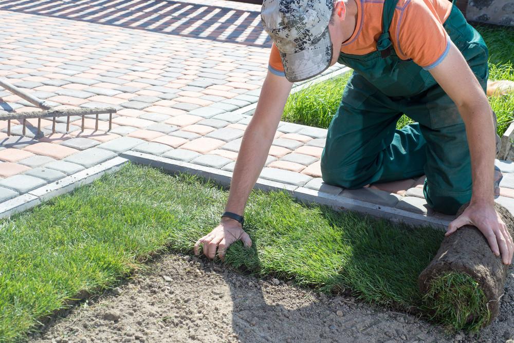 Ga je graszoden leggen of zaai je het gras zelf in?