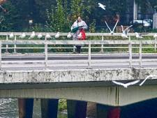 Meierijstad vervangt negen bruggen