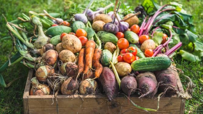 Biologische voeding valt door de mand: geregeld ongezonder dan gewone variant