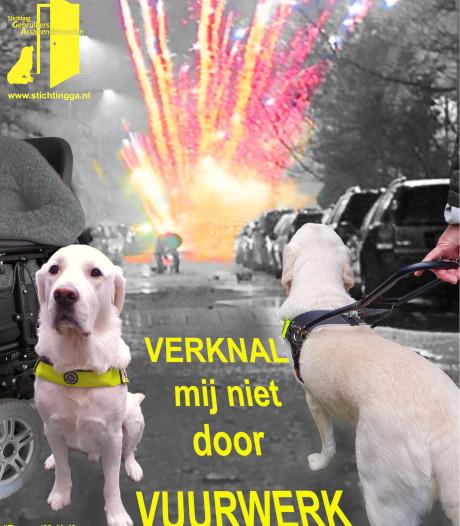 Hulphond Vlissingse Sylvia met vuurwerk bekogeld; 'het gebeurde in een vuurwerkvrije zone'