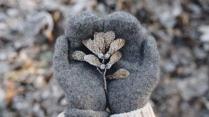 Gezocht: winterkleding en schoenen voor kinderen