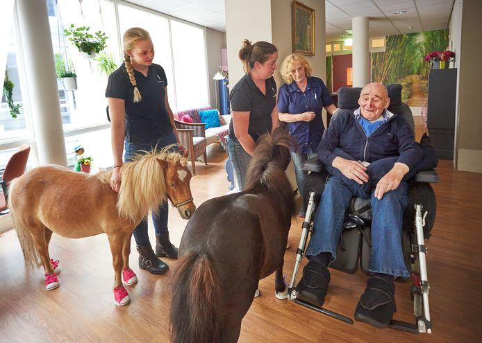 Bewoners van De Watersteeg leven op bij het zien van de pony's. Foto Jeroen Appels/Van Assendelft Fotografie