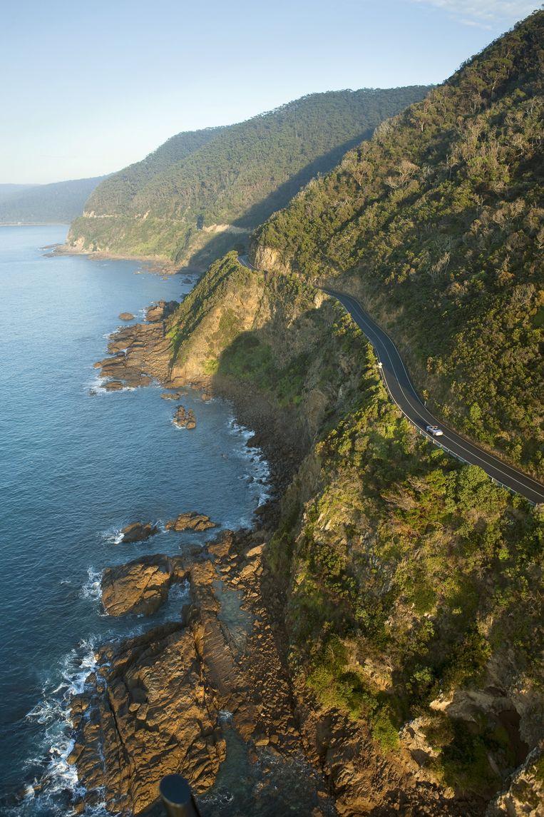 The Great Ocean Road, een legendarische, 250 kilometer lange kustweg bij Melbourne.   Beeld Dieter Moeyaert