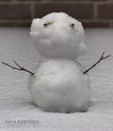 Sneeuwpop aan de Eikenhorst in Alphen.