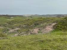 Op strand Oranjezon krijgt de natuur weer kansen