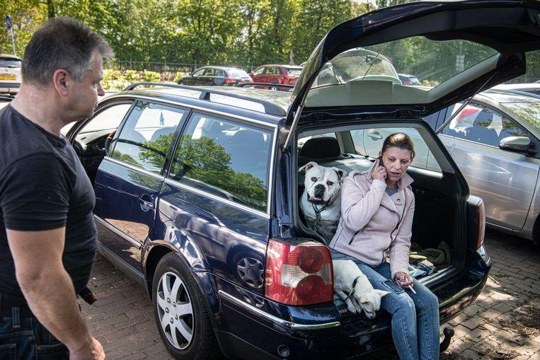 Milan Cervenka en Marie Machalova, inwoners van Herkenbosch, moesten hun huis uit . Ze wachten in hun auto samen met hun honden . Beeld Koen Verheijden