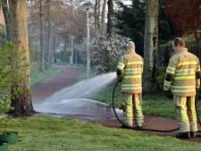 Mysterieuze bomenhater overgiet bomen in Schothorst opnieuw met zuur