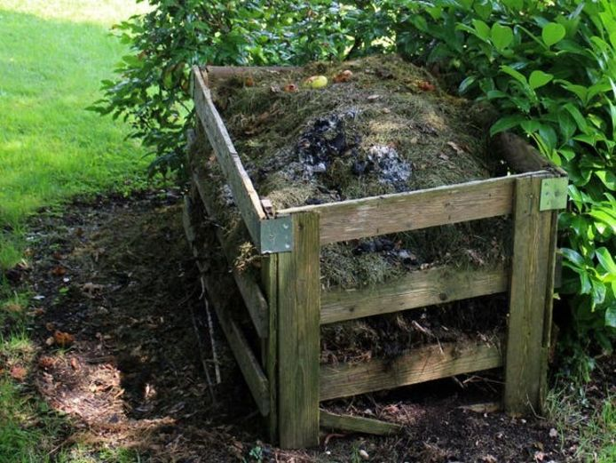 Een zandgrond kan water beter vasthouden als er per m2 twee emmers compost onder worden verwerkt.