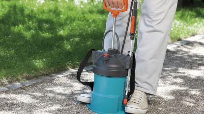 Hoe ga je onkruid te lijf zonder pesticiden? Deze middeltjes helpen echt