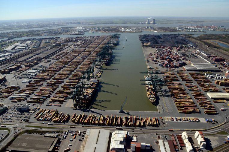 Het Delwaidedok in de Antwerpse haven. Beeld Foto Haven van Antwerpen